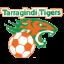 Tarragindi Tigers