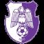 ACS Champions FC Arges