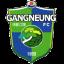 Гангнеунг Сити