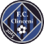 ACS FC Academia Clinceni
