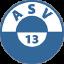 АСВ 13
