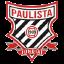 Paulista FC SP