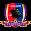 Pequim BG Phoenix FC