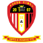 Hayes & Yeading United F.C.