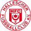 Hallescher U19