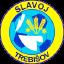 FK Slavoj Trebisov