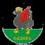 DYUSSH Vahitovskij Kazan