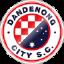Dandenong City U20