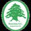 Boavista RJ U20