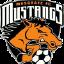 Musgrave Mustangs II
