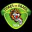 Tigres do Brasil U20