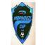 Mapinduzi Kupası
